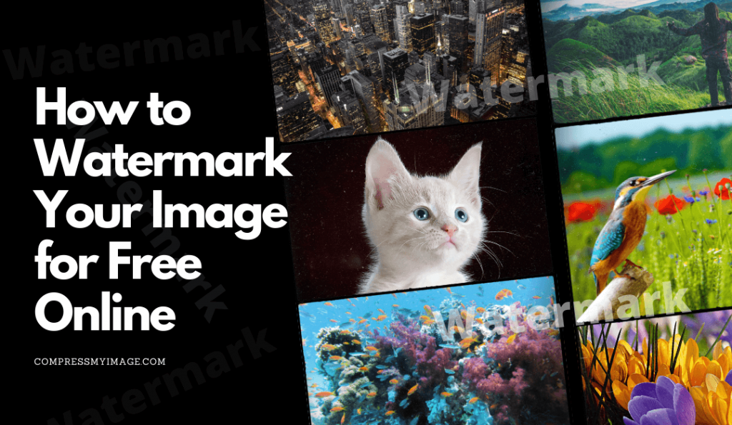How to Add Watermark in My Image Online for Free